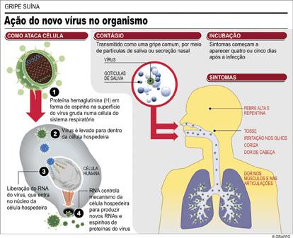 Sintomas da gripe suína são mais fortes do que a da doença tradicional