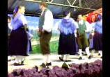 Grupo de dança Schmetterling